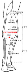 The two bellies of the gastrocnemius muscle are so prominent as a mountain, chengshan, BL57 is below them, as sustaining the mountain.