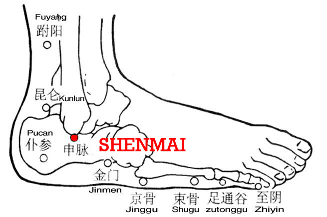 Shenmai pertains to the bladder meridian, from where the meridian extends to the Yang Heel Vessel (Yangqiaomai).