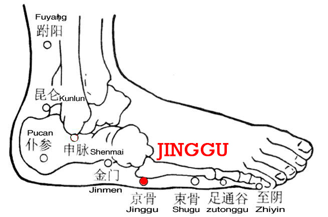 Jinggu is an ancient name for the tuberosity of the 5th metatarsal and the point is on the lateral aspect of the tuberosity of the 5th metatarsal.