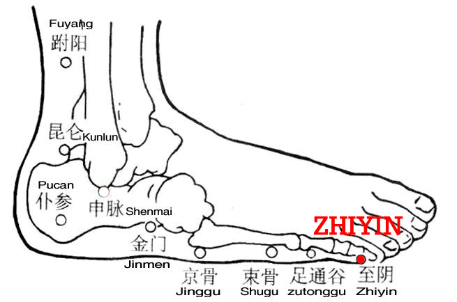 Yin refers to the foot-shaoyin meridian. Zhiyin, BL67 is the end point of the bladder meridian of Foot-Taiyang. From here it reaches to the foot-shaoyin meridian.