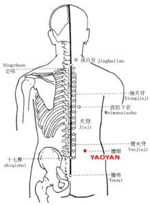 Yaoyan EX-B7: Location, Functions, Indications, Method - Acupuncture