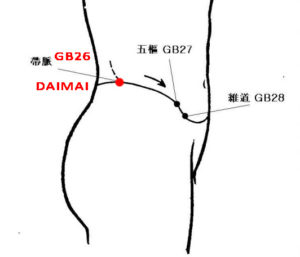 Daimai lies 8 cun posterior to Zhangmen(LR13), at the junction of the vertical line of the free end of the 11th rib and the horizontal line of the umbilicus.