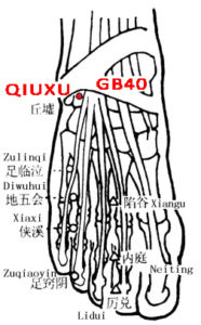 Qiuxu lies anterior and inferior to the external malleolus, in the depression on the lateral side of the tendon of m.extensor digitorum longus.