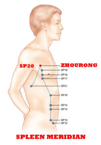 Zhourong-SP20