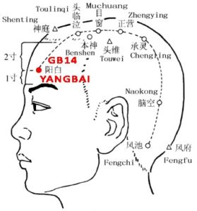 Yang refers to the head. Yangbai is at the head and its function is to bright the eye.