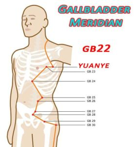 Yuanye is at the axilla,on the mid-axillary line when the arm is raised, 3 cun below the axilla, in the 4th intercostal space.