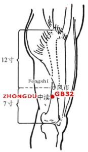 On the lateral aspect of the thigh, 2 cun inferior to Fengchi (GB31) or 5 cun superior to the popliteal crease, between vastus lateralis and biceps femoris.