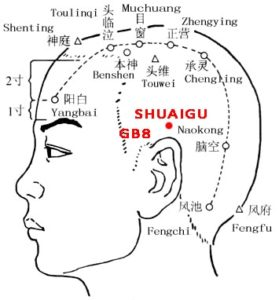 "Shuaigu is above the ear and is the highest of all the points named gu (valley), like a ""commander""."