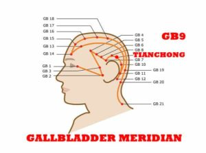 Tian refers to the head, where the point is located. The Qi and blood gush upwards to the vertex of the head from this point.