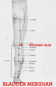 "Yang means ""exterior"". Weiyang is lateral to Weizhong (BL40) on the transverse crease of the popliteal fossa."