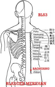 Bao refers to the bladder. Baohuang, BL 53  is at the level of Pangguangshu (BL30).