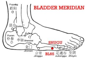 Shugu, BL65 is an ancient name of the head of the 5th metatarsal and the point is on the lateral inferior aspect of the head of the 5th metatarsal.