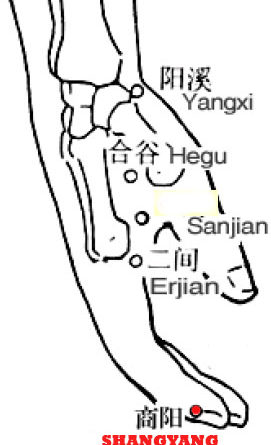 Shangyang-LI1