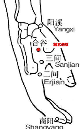 Hegu - LI4