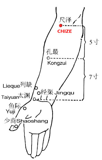 Chize LU5 : Nomenclature, Location, Function, Indication ...