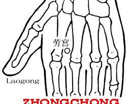 Zhongchong-PC9
