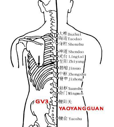Yaoyangguan-GV3
