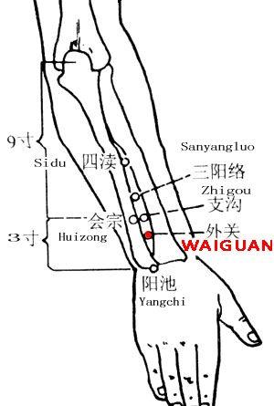 Waiguan-TE5