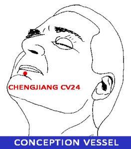 Chengjiang-CV24