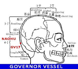 Naohu GV17